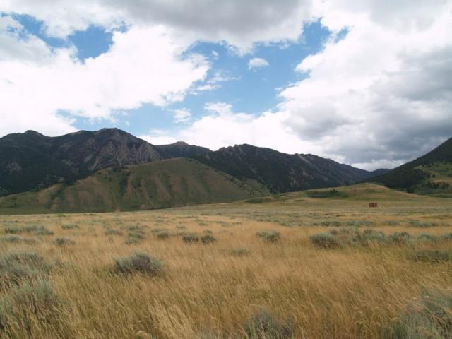 Lots 44 & 45 Sportsman's Paradise, Cameron, MT 59720 (MLS #310694) :: Black Diamond Montana