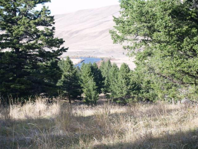 Lot 17 Sun West Ranch, Cameron, MT 59720 (MLS #311024) :: Black Diamond Montana