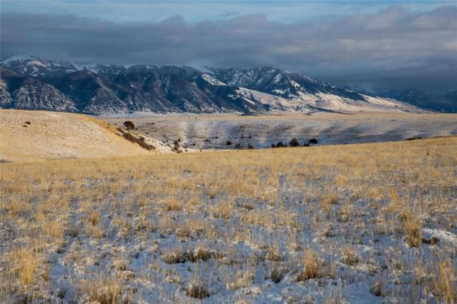 Lot 106 Pronghorn Meadows, Ennis, MT 59729 (MLS #311118) :: Black Diamond Montana