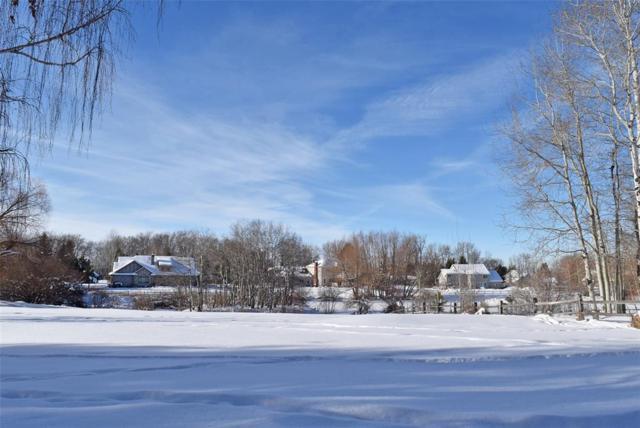 57 Hitching Post Road, Bozeman, MT 59715 (MLS #312498) :: Black Diamond Montana | Berkshire Hathaway Home Services Montana Properties