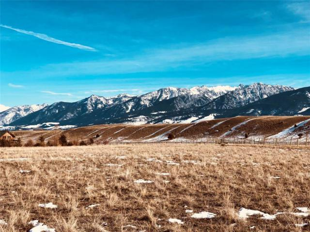 TBD Tomahawk Court, Pray, MT 59065 (MLS #312639) :: Black Diamond Montana   Berkshire Hathaway Home Services Montana Properties