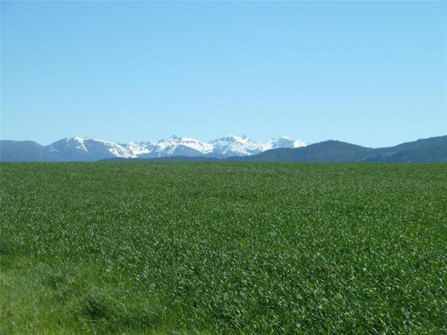 Parcel 1 Cos 2303, Montana Ranch, Gallatin Gateway, MT 59730 (MLS #312707) :: Black Diamond Montana | Berkshire Hathaway Home Services Montana Properties