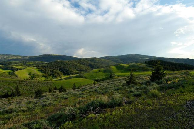 TBD Elderidge Creek Trail, Livingston, MT 59047 (MLS #314135) :: Black Diamond Montana | Berkshire Hathaway Home Services Montana Properties