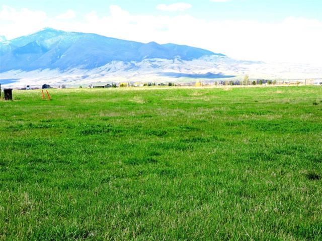 4 Chuckwagon Trail, Sheridan, MT 59749 (MLS #317281) :: Hart Real Estate Solutions
