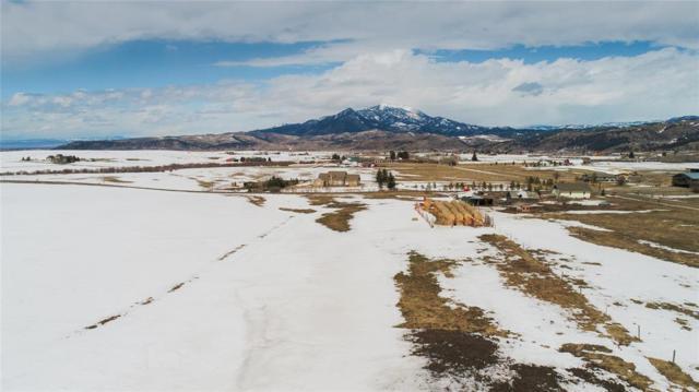 1903 Mount Ellis Ln, Bozeman, MT 59715 (MLS #317757) :: Black Diamond Montana | Berkshire Hathaway Home Services Montana Properties