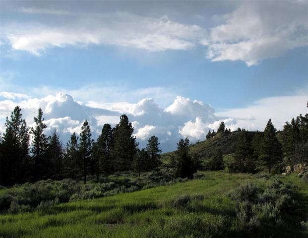 tbd Starlight Drive, Roundup, MT 59072 (MLS #317772) :: Black Diamond Montana