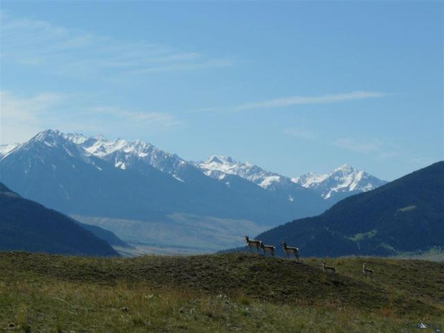 Lot 19 Cougar Court, Livingston, MT 59047 (MLS #317852) :: Black Diamond Montana