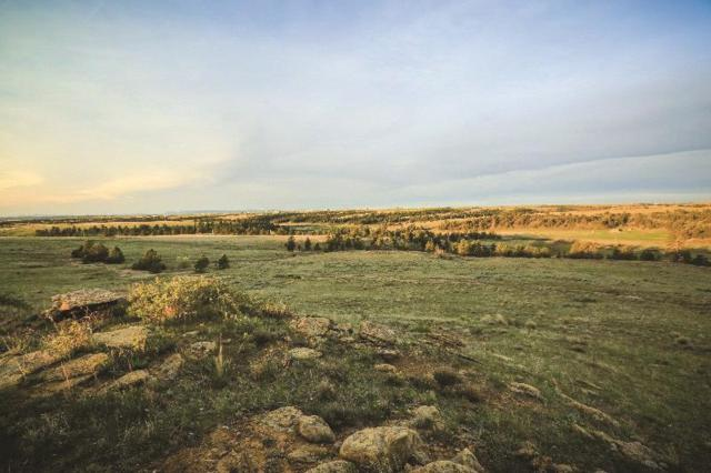 2139 Alkali Creek Rd, Billings, MT 59105 (MLS #319766) :: Black Diamond Montana | Berkshire Hathaway Home Services Montana Properties