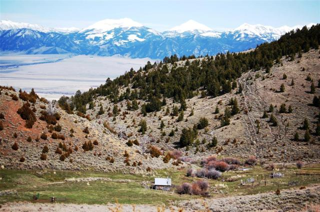 2993+ Acres Race Track, Ennis, MT 59729 (MLS #319787) :: Black Diamond Montana | Berkshire Hathaway Home Services Montana Properties