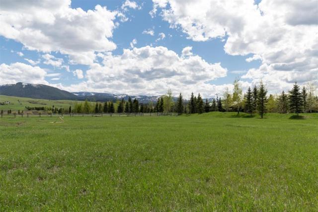 TBD Doney Way, Bozeman, MT 59715 (MLS #319927) :: Black Diamond Montana | Berkshire Hathaway Home Services Montana Properties