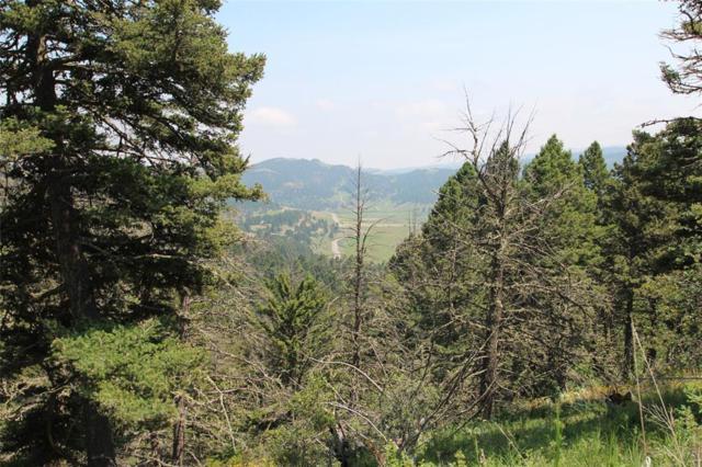 600 Bear Tracks Road, Bozeman, MT 59715 (MLS #319976) :: Hart Real Estate Solutions