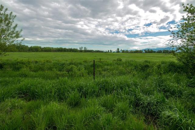 35 Voyager Lane, Bozeman, MT 59718 (MLS #321108) :: Hart Real Estate Solutions