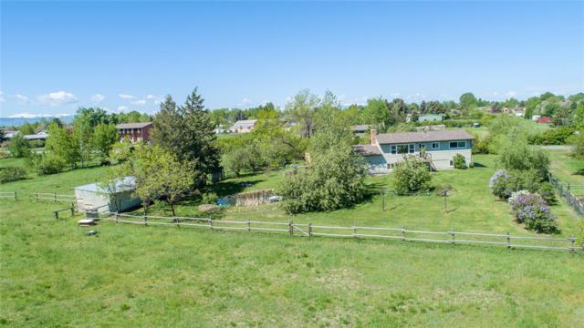 28 Border Lane, Bozeman, MT 59718 (MLS #321151) :: Hart Real Estate Solutions