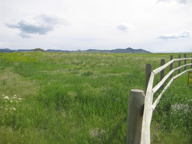 Lot 1 N Jefferson River Ranches, Whitehall, MT 59759 (MLS #321291) :: Black Diamond Montana
