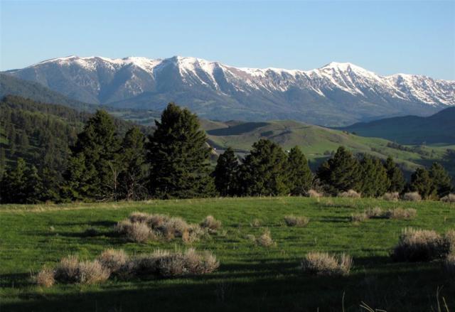 199 Elk Ridge Road, Livingston, MT 59047 (MLS #321305) :: Hart Real Estate Solutions