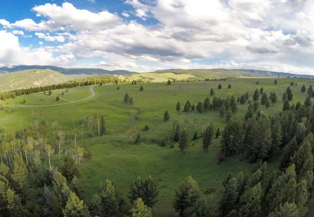 Lot 39 Porcupine Park, Big Sky, MT 59716 (MLS #321319) :: Black Diamond Montana