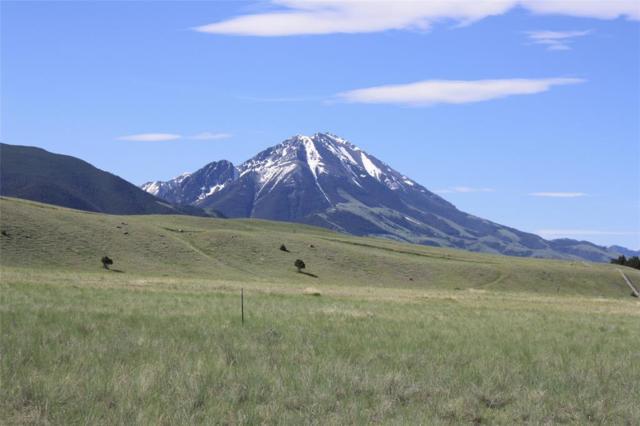 Lot 28 Brown Pony Trail, Livingston, MT 59047 (MLS #321417) :: Black Diamond Montana