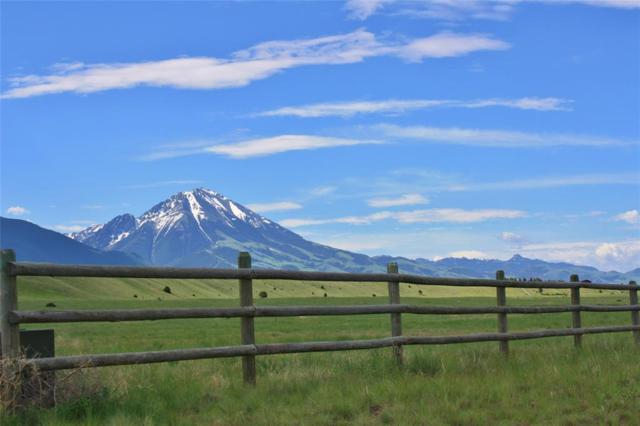 Lot 25 Chicory Road, Livingston, MT 59047 (MLS #321422) :: Black Diamond Montana