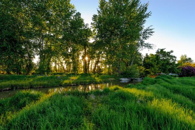 NHN River Road, Bozeman, MT 59718 (MLS #321761) :: Black Diamond Montana
