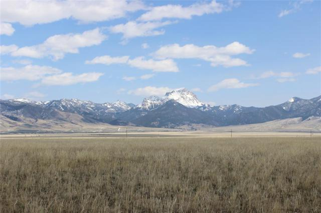 LOT 102 Holding Pen, Cameron, MT 59720 (MLS #322302) :: Montana Life Real Estate