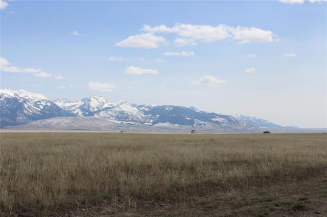 Lot 103 Holding Pen, Cameron, MT 59720 (MLS #322303) :: Montana Life Real Estate