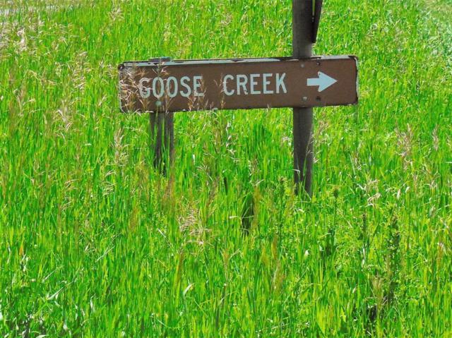 TBD Goose Creek Road, Bozeman, MT 59715 (MLS #322379) :: Hart Real Estate Solutions
