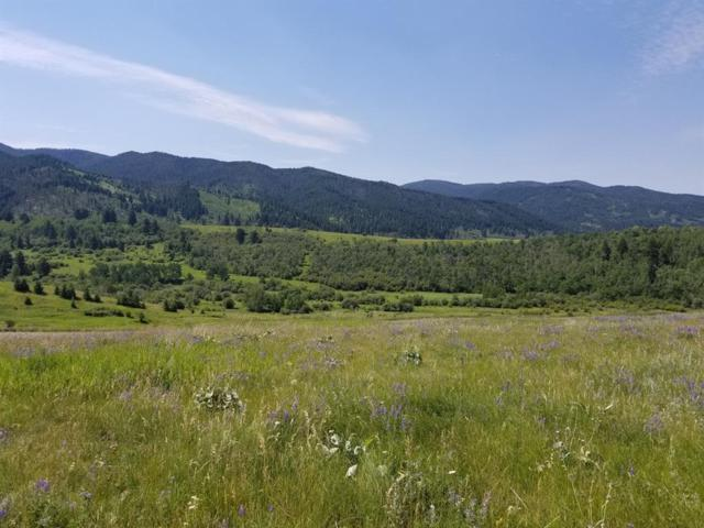 Lot 4 S Columbine Lane, Bozeman, MT 59715 (MLS #322554) :: Black Diamond Montana
