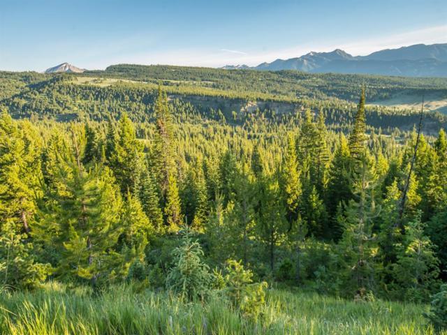 Lot 19 Towering Pines, Big Sky, MT 59716 (MLS #322616) :: Hart Real Estate Solutions