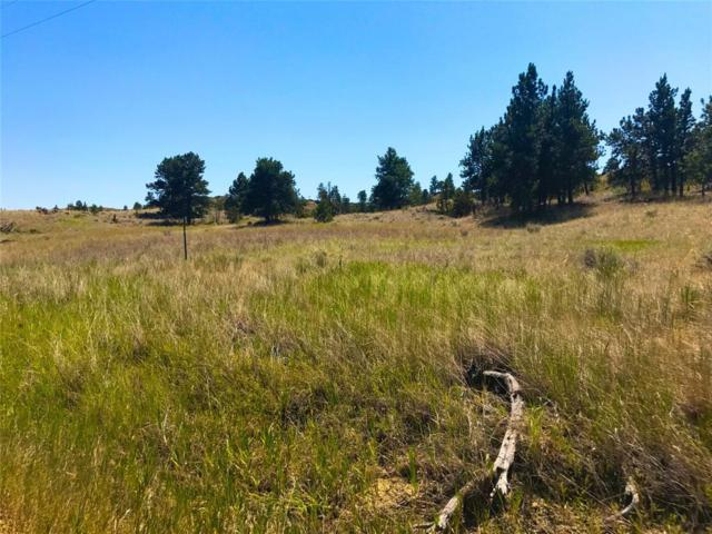TBD East Sunshine Rd, Roundup, MT 59072 (MLS #322681) :: Black Diamond Montana