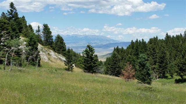 LV18 Livingston Peak, Livingston, MT 59047 (MLS #323767) :: Hart Real Estate Solutions