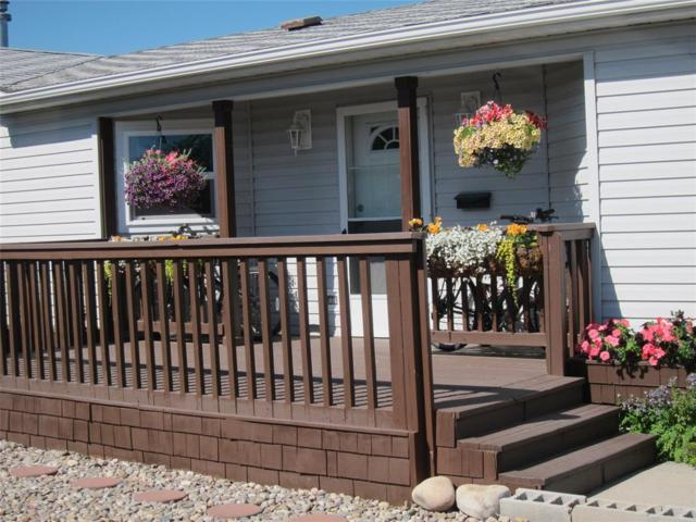 460 Green Tree Drive, Belgrade, MT 59714 (MLS #323867) :: Black Diamond Montana   Berkshire Hathaway Home Services Montana Properties