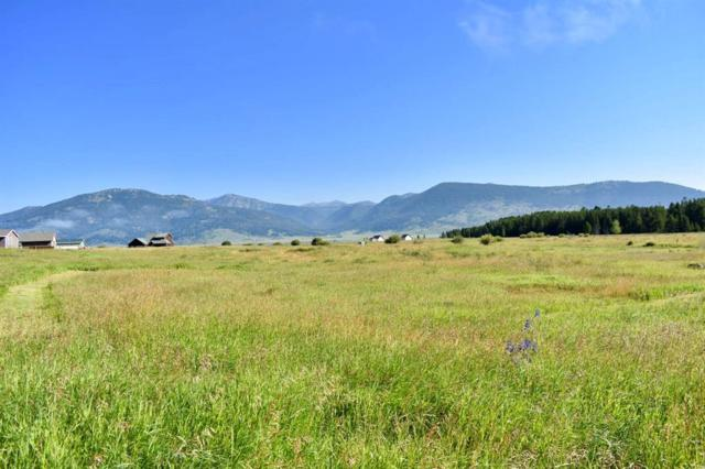 TBD Moose Drive, West Yellowstone, MT 59758 (MLS #323905) :: Black Diamond Montana