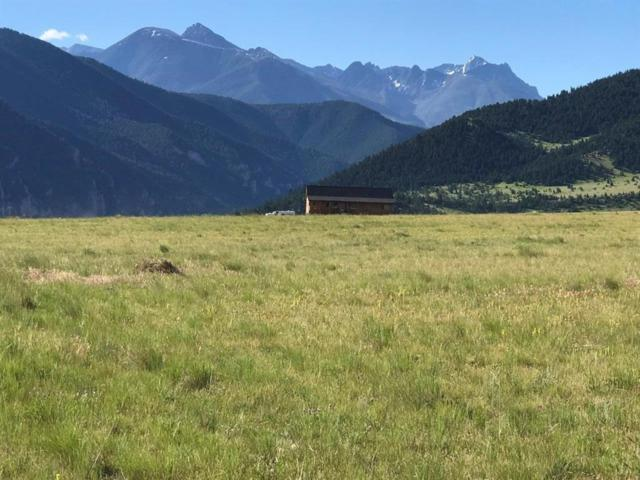 NHN Buffalo Trail, Livingston, MT 59047 (MLS #324100) :: Black Diamond Montana