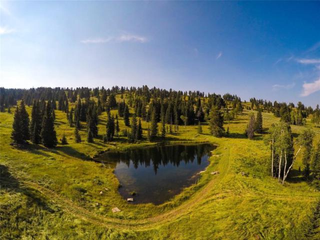 Big EZ Ranch 2 - Charlie Russell Loop Road, Big Sky, MT 59716 (MLS #324395) :: Black Diamond Montana