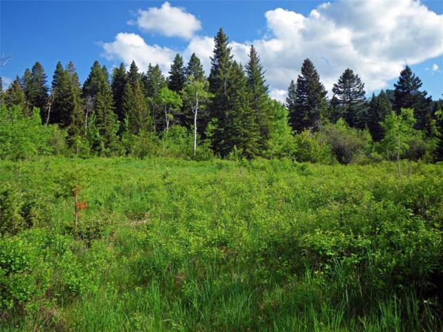 TBD Big Bear Road, Gallatin Gateway, MT 59730 (MLS #324440) :: Hart Real Estate Solutions