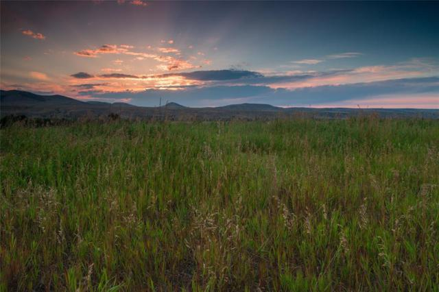 TBD Lower Tom Burke Road, Gallatin Gateway, MT 59730 (MLS #324543) :: Hart Real Estate Solutions