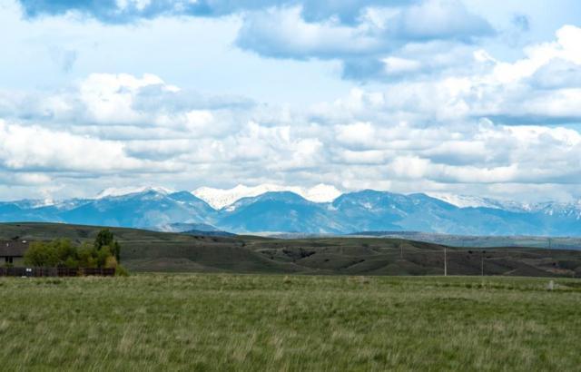 Lot 20 Wheatland Meadows Drive, Three Forks, MT 59752 (MLS #325598) :: Black Diamond Montana