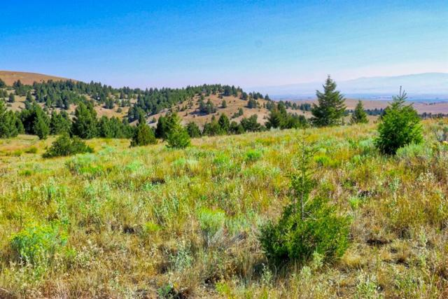 10 Beckford Dr, Anaconda, MT 59711 (MLS #325613) :: Black Diamond Montana   Berkshire Hathaway Home Services Montana Properties