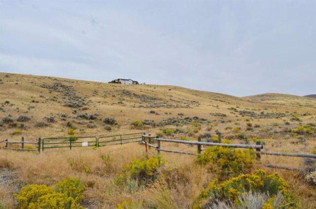 468 Gamblers Run, Dillon, MT 59725 (MLS #326489) :: Black Diamond Montana