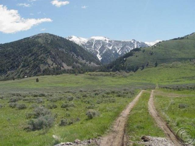 TBD Sheep Creek, Cameron, MT 59720 (MLS #326838) :: Black Diamond Montana