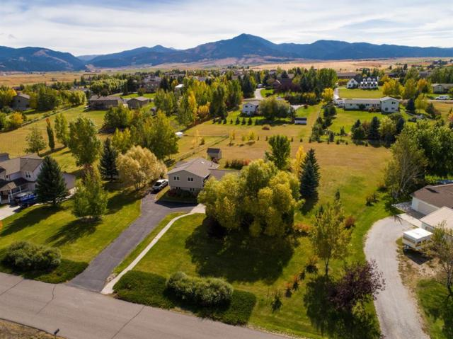 1408 Bluebird, Bozeman, MT 59715 (MLS #326911) :: Black Diamond Montana
