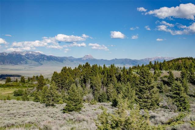 TBD Axolotl Ranches Road, Ennis, MT 59729 (MLS #327193) :: Black Diamond Montana