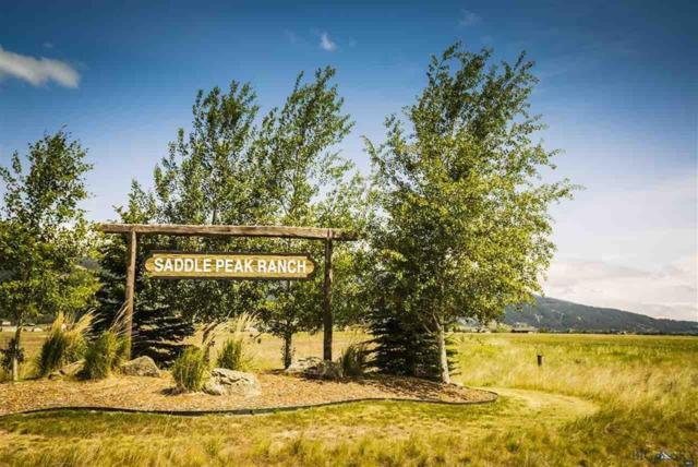 TBD Saddle Peak Circle, Bozeman, MT 59715 (MLS #327270) :: Black Diamond Montana