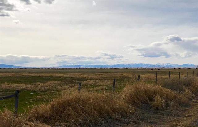 TBD Bolinger Road, Belgrade, MT 59714 (MLS #328307) :: Black Diamond Montana