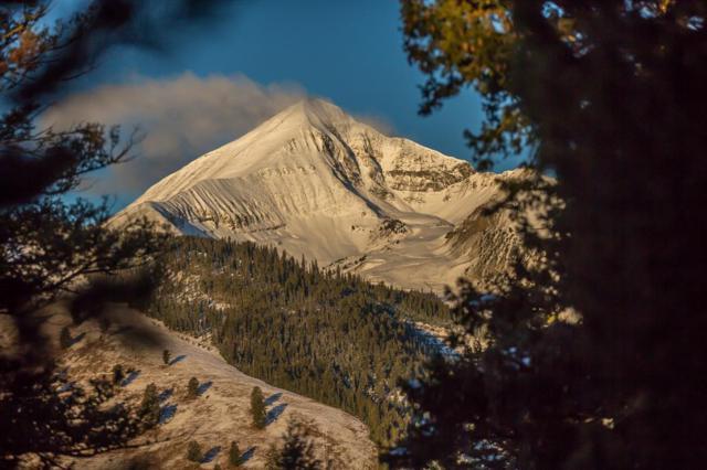 8 Lost Trails Road, Big Sky, MT 59716 (MLS #328332) :: Black Diamond Montana