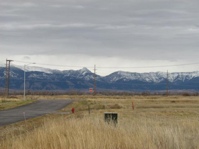 TBD Culver Place, Manhattan, MT 59741 (MLS #328547) :: Hart Real Estate Solutions
