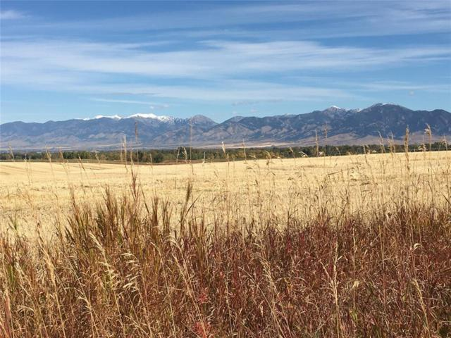 TBD Johnson Road, Bozeman, MT 59718 (MLS #328622) :: Hart Real Estate Solutions