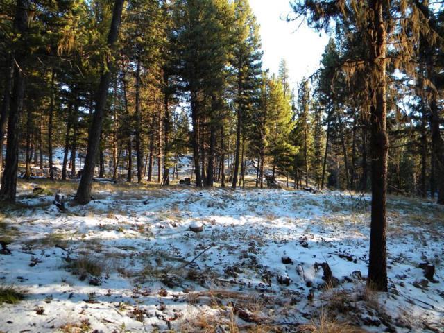 Lot 65 Spring Creek Drive, Seeley Lake, MT 59868 (MLS #329166) :: Hart Real Estate Solutions