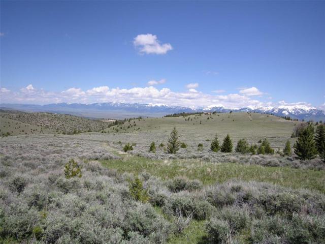 Lot 219 Shining Mountains II, Ennis, MT 59729 (MLS #329382) :: Black Diamond Montana