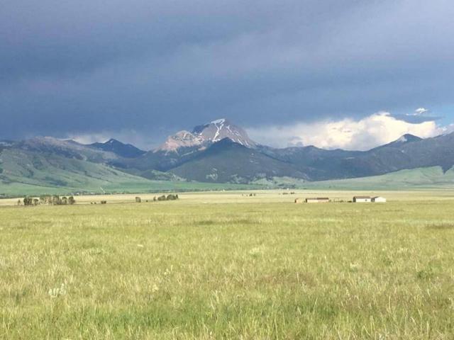 Lots 27 & 28 Section 35 Lonesome Dove Ranch, Cameron, MT 59720 (MLS #329434) :: Black Diamond Montana